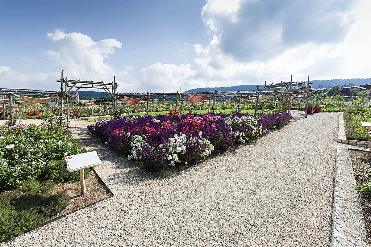 Il Giardino Della Rosa Di Ronzone